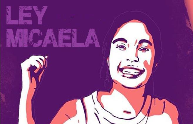 Villarino Ley Micaela